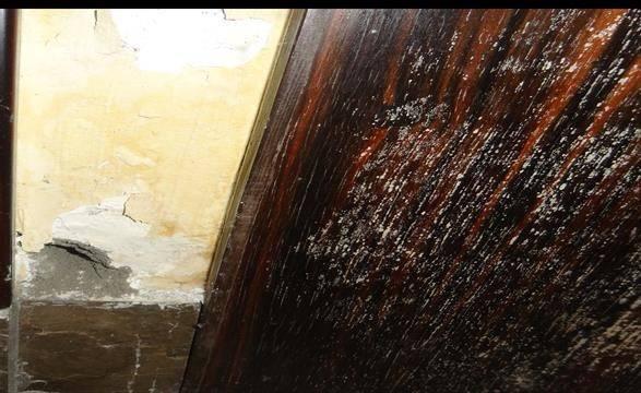 装修鉴定南国奥林匹克房屋建筑装饰装修工程